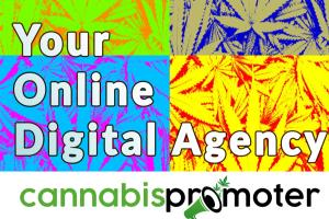 Portfolio for Cannabis Marketing and Content Creation