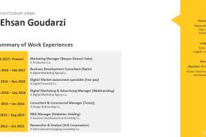 Portfolio for Professional PowerPoint Specialist