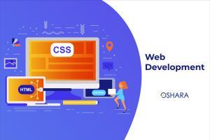 Portfolio for Custom Websites Development