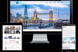 Portfolio for Online Advertising