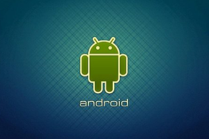 Portfolio for Android Application Developer