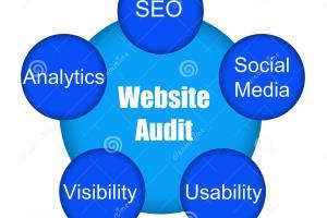 Portfolio for Website Audit