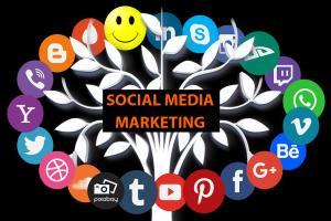Portfolio for Instagram Marketing / Influencer Expert