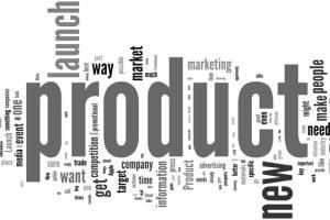 Portfolio for Provide Compelling Product Descriptions