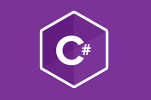 Portfolio for Web Development in C#
