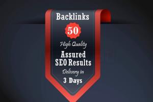 Portfolio for 300 high authority permanent backlinks