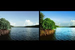 Portfolio for I will edit all your photos