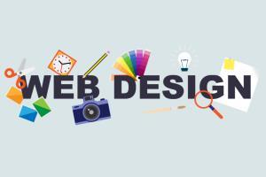 Portfolio for WordPress website Creation