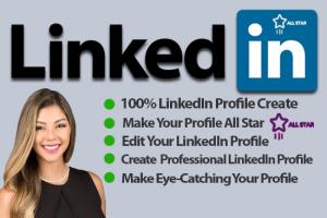 Portfolio for I will Create Your LinkedIn Profile