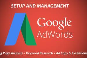 Portfolio for I Will Run Google Adwords PPC Campaign