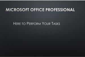 Portfolio for Microsoft Office Professional