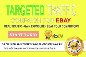 Portfolio for Real targeted traffic to ebay listing