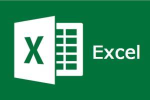 Portfolio for Data Analysis with Excel