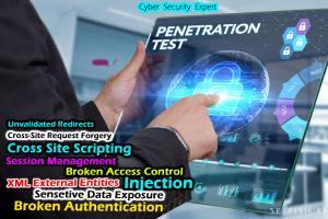 Portfolio for Website Penetration Testing