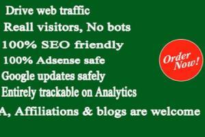 Portfolio for I Will Drive Unlimited Web Traffic
