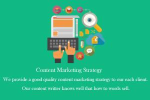 Portfolio for Content Marketing Strategy