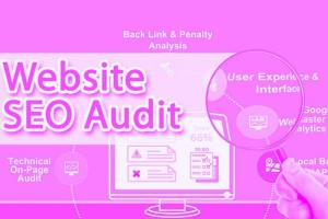 Portfolio for Website SEO Audit Report | SEO Analysis