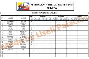 Portfolio for Excel Forms, Data Entry, Data Analysi