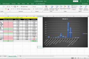 Portfolio for Data entry and transcription