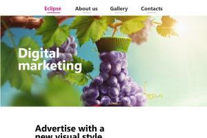 Portfolio for UI/UX / Graphics   Branding  