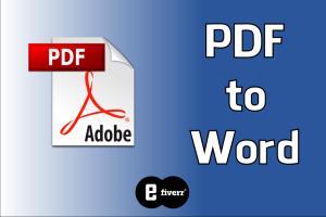 Portfolio for Convert PDF to Word, Excel, PPT, Image
