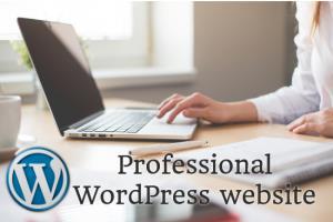 Portfolio for Design a professional wordpress website