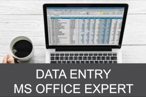 Portfolio for I am expert in Data Entry & Editing