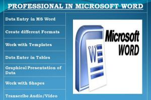 Portfolio for DATA ENTRY IN MICROSOFT WORD