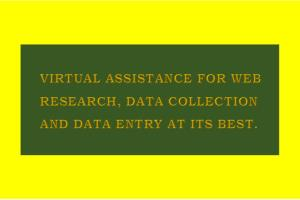 Portfolio for Virtual assistant & data entry expert.