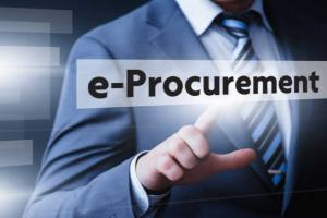 Portfolio for Strategic Procurement Category Manager