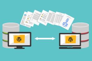 Portfolio for Full WordPress Website Migration Service