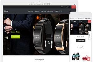 Portfolio for Shopify Website Design And Development