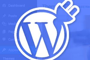 Portfolio for Custom WordPress plugins for $80