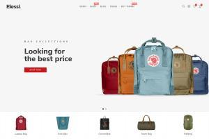 Portfolio for Shopify Ecommerce Website Development