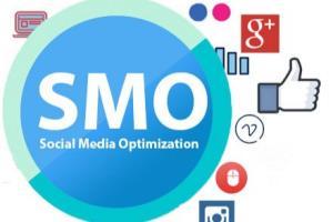 Portfolio for Social Media Optimization(SMO) and SMM