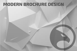 Portfolio for Modern Brochure Design