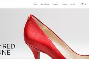 Portfolio for Wordpress Customization