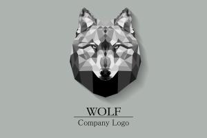Portfolio for Custom Logo Design