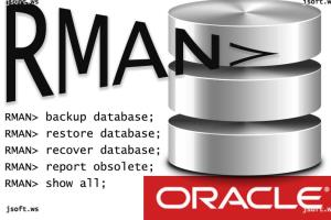 Portfolio for Oracle Database Administration