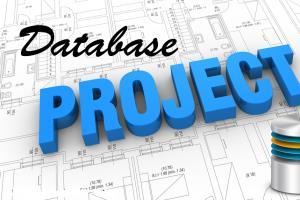 Portfolio for Database Design and Development