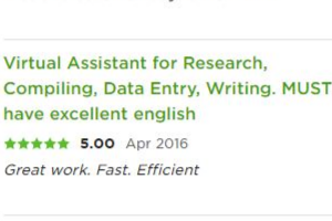 Portfolio for Data Entry/Web Research Specialist