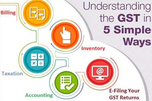 Portfolio for GST Billing Accounting Software