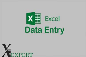 Portfolio for Excel Data Entry Services