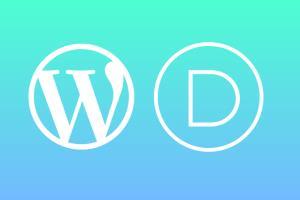 Portfolio for Wordpress Website With Divi Theme
