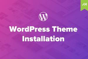 nstall Wordpress Theme As Like Your Demo Theme