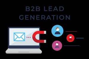 Portfolio for B2B Lead Generation/ Email Listing