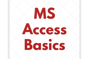 Portfolio for Microsoft Ms Access