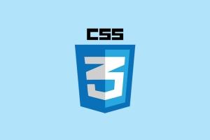 Portfolio for CSS (cascading style sheet)