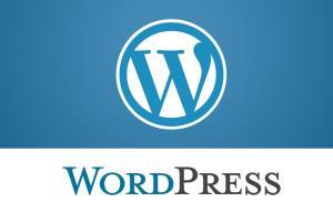 Portfolio for wordpress web designer