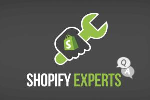 Portfolio for I Can Be Your Shopify Specialist